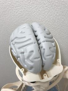 脳はアウトプットで記憶する⁉